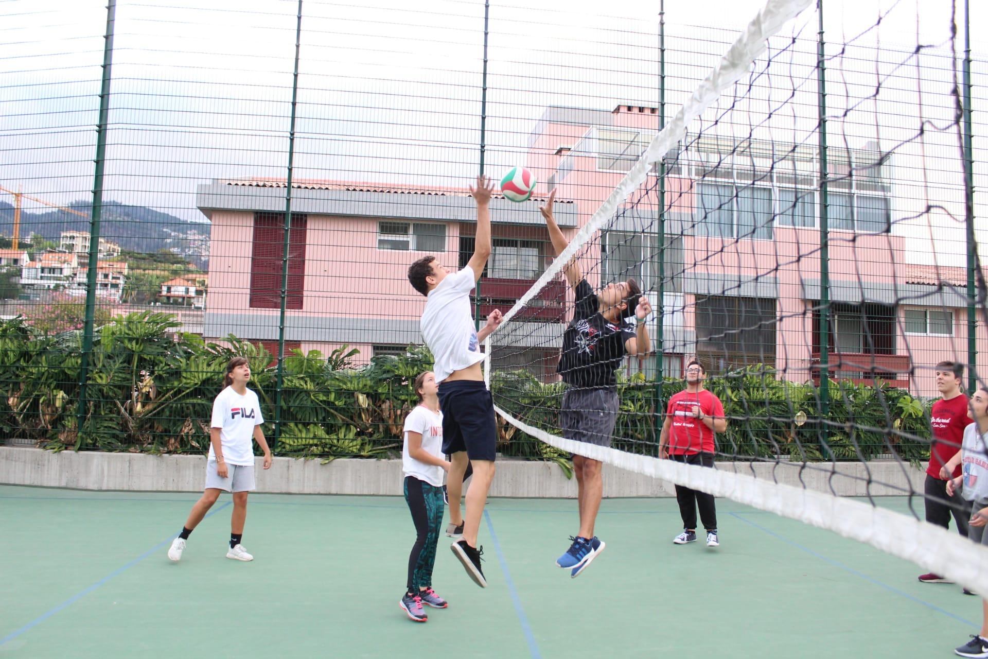 DE Voleibol